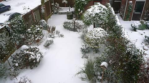 Sneeuw in de Tuin 2010